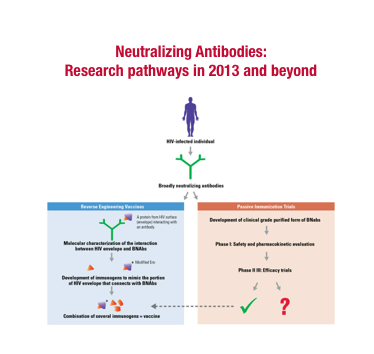 Neutralizing antibodies: research pathways in 2013 and beyond