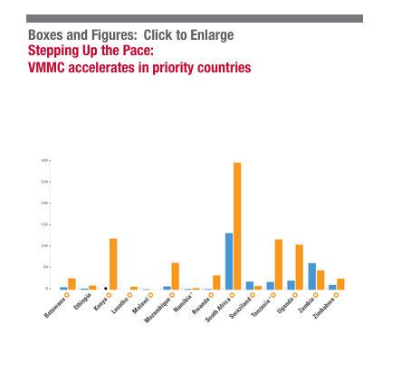 Stepping up the pace: vmmc accelerates in priority countries